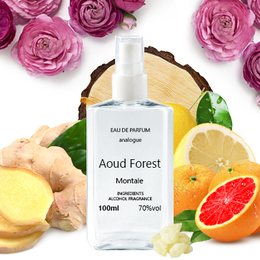 Montale Aoud Forest 100 ml